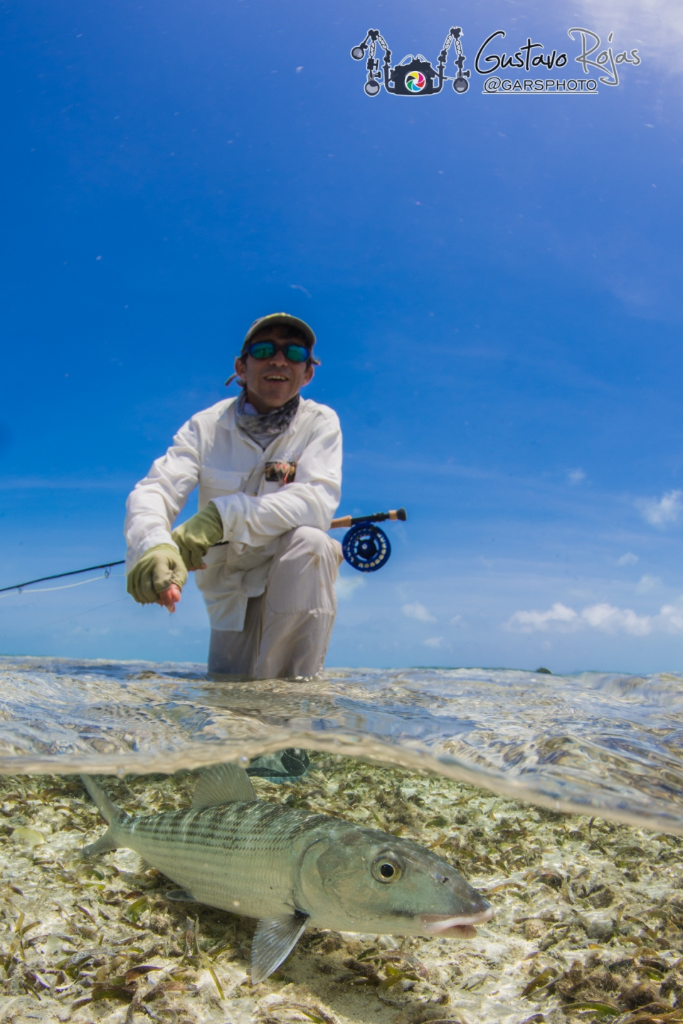 flyfisherman with bonefish in tropical lagoon, Los roques